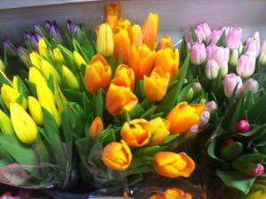 Reesor's Fresh Cut Flowers