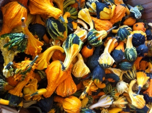 reesors-gourds