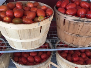 reesors-tomatoes03