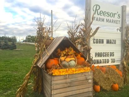 reesors-farm-market-01